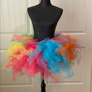 Large Rainbow Small Fish Net Tutu